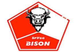Wappen SpVgg. Bison (Ground B)