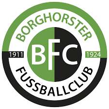 Wappen Borghorster FC 11/24 IV