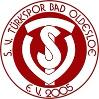 Wappen SV Türkspor Bad Oldesloe 2005 (Ground B)