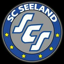 Wappen SC Seeland 2013 (Ground B)