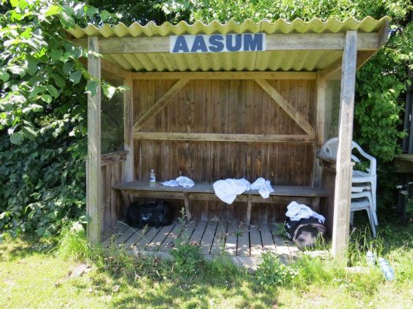 Aasum Stadion Stadion In Odense åsum