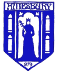 Wappen Amesbury Town FC