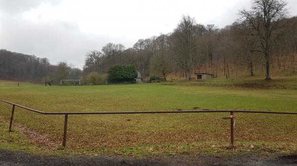 Sportplatz Steinbach